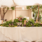 Tuscan table under the tent